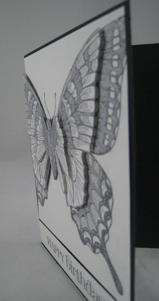 swallowtail 3D-3