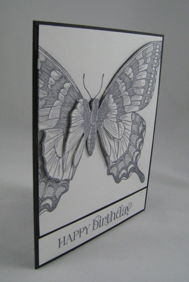 swallowtail 3D