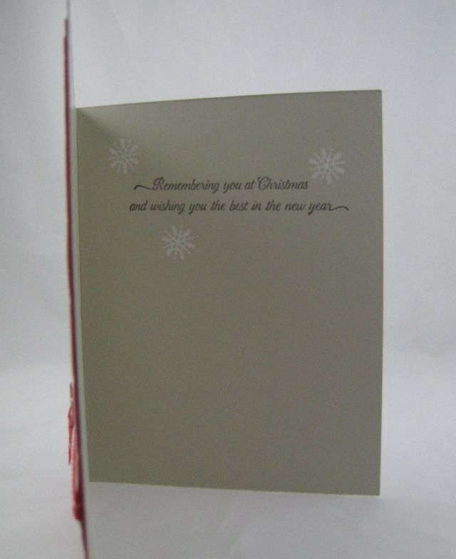 double embossing3- inside