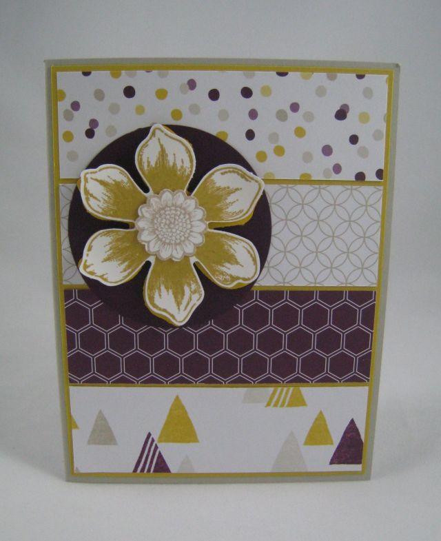 panal card3