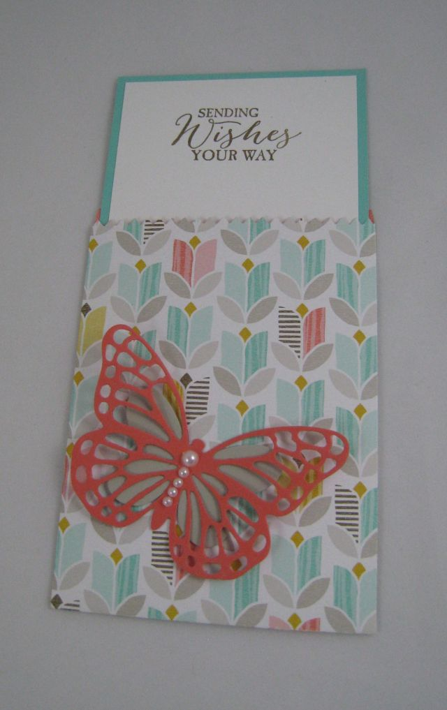mini treat bag butterfly inside